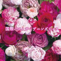 祝20周年!国際バラとガーデニングショウ開催!