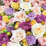 サンシャインシティは花ざかり!思う存分お花を楽しもう♪