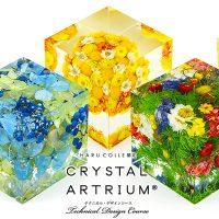 「クリスタル・アートリウム」レッスンが続々開講!